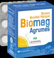 Lehning Biomag Comprimés à Croquer Agrumes B/90 à VITRE