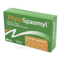 Phytospasmyl Caps B/60 à VITRE
