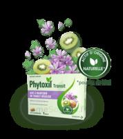Phytoxil Transit Comprimés B/20 à VITRE