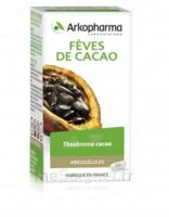 Arkogélules Cacao Gélules Fl/45 à VITRE