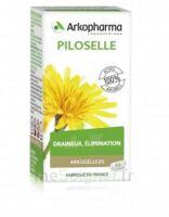 Arkogélules Piloselle Gélules Fl/45 à VITRE