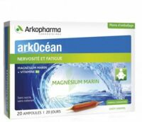 Arkocean Magnesium Marin Solution Buvable Caramel 20 Ampoules/10ml à VITRE