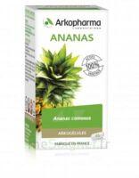 Arkogélules Ananas Gélules Fl/45 à VITRE