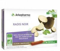 Arkofluide Bio Ultraextract Radis noir Solution buvable 20 Ampoules/10ml à VITRE