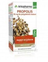 Arkogélules Propolis Bio Gélules Fl/45 à VITRE