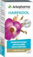ARKOGELULES HARPAGOPHYTON Gélules Fl/150 à VITRE
