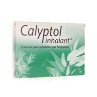 Calyptol Inhalant, émulsion Pour Inhalation Par Fumigation à VITRE
