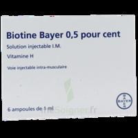 Biotine Bayer 0,5 Pour Cent, Solution Injectable I.m. à VITRE