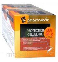 Bconcept Nutri Complex Protection cellulaire Lot 2 boîtes 30 capsules à VITRE
