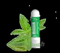 Puressentiel Respiratoire Inhaleur Respiratoire aux 19 Huiles Essentielles - 1 ml à VITRE