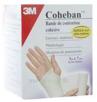 Coheban, Blanc 3 M X 7 Cm à VITRE