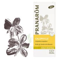 Pranarom Huile Végétale Bio Calophylle 50ml à VITRE