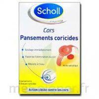 Scholl Pansements coricides cors à VITRE