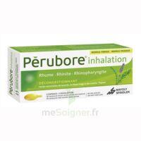 Perubore Caps Inhalation Par Vapeur Inhalation Plq/15 à VITRE