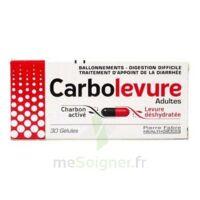 CARBOLEVURE Gélules adulte Plq/30 à VITRE