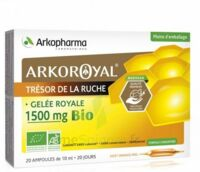 Arkoroyal Gelée royale bio 1500 mg Solution buvable 20 Ampoules/10ml à VITRE