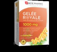 Forte Pharma Gelée Royale 1000 Mg Solution Buvable 20 Ampoules/10ml à VITRE