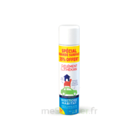 Clément Thékan Solution insecticide habitat Spray Fogger/300ml à VITRE