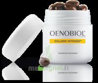 Oenobiol Solaire Intensif Caps peau normale Pot/30 à VITRE