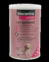 Biocanina Lait poudre maternisé B/400g à VITRE