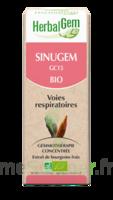 Herbalgem Sinugem Solution Buvable Bio Fl Cpte-gttes/30ml à VITRE