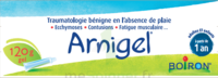 Boiron Arnigel Gel T/120g à VITRE