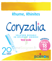 Boiron Coryzalia Solution buvable unidose B/20 à VITRE