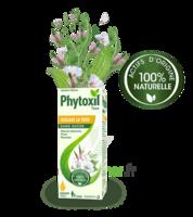 Phytoxil Toux Sans Sucre Sirop Adulte Enfant +2 Ans Fl/120ml à VITRE