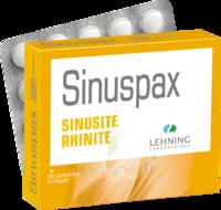 Lehning Sinuspax Comprimés à Croquer 3plq/20 à VITRE