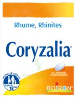 Boiron Coryzalia Comprimés orodispersibles à VITRE